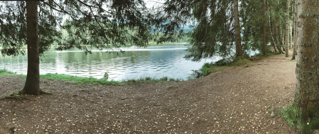 Roadtrip Schwarzsee
