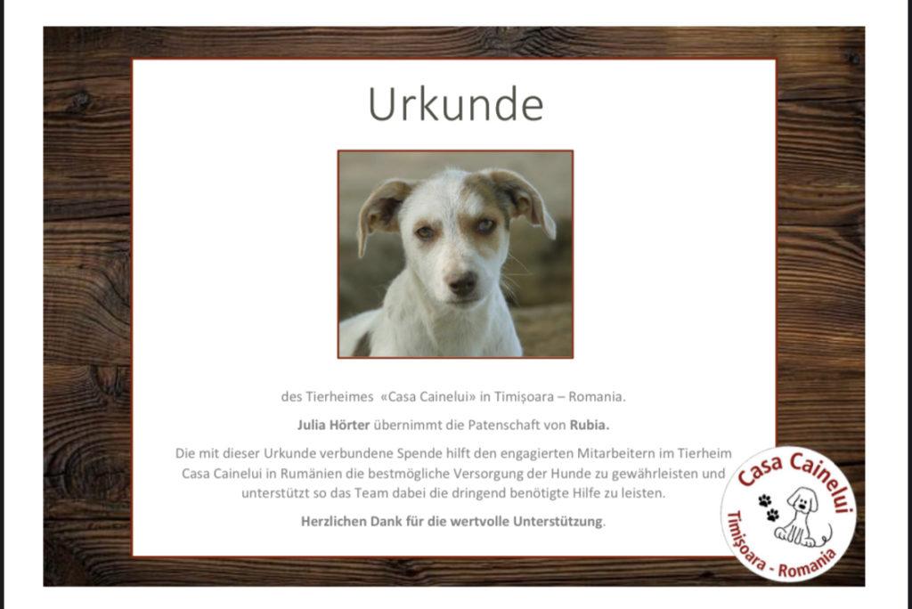 Spendenurkunde Rubia Jahresrückblick 2019